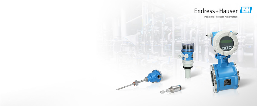 Endress+Hauser now available!